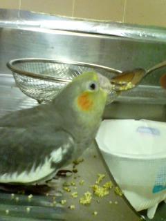 飯を食う西川さん