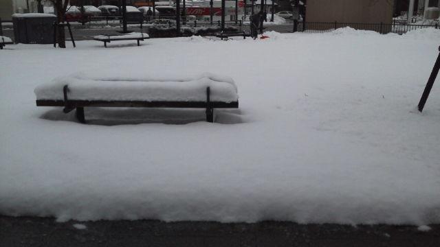 確かに雪見たいと言いました